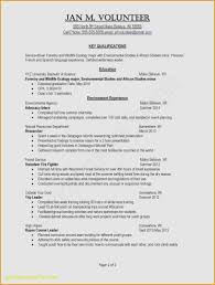 Professor Resume Sample 60 Beautiful University Professor Resume Sample Best Resume 41