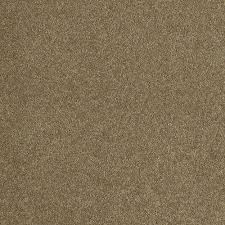 greens home decorators collection texture carpet samples