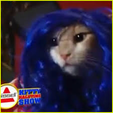 puppy bowl 2015 halftime.  Bowl Katy Perry Gets Puppy Bowl Spoof With U0027Katty Furryu0027 Video In 2015 Halftime