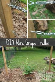 learn how to build a wire trellis with this diy weekend project this trellis is great for any climbing vegetables gs and even roses