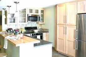 Home Remodeling Cost Estimate Template Elegant Kitchen Remodel