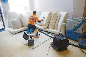 Furniture Cleaning Company Property