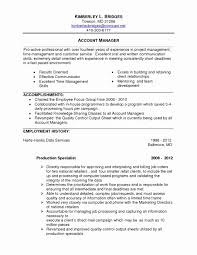 11 Marketing Manager Resume Template Collection Resume Template