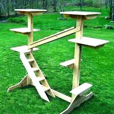 outdoor cat tree furniture house trees diy