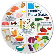 healthy food plate for kids. Fine Kids Healthy Plat Diagram Healthy Plate Guideu0026nbsp To Food For Kids D