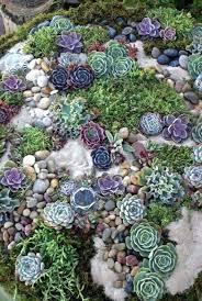 rock garden ideas rock garden ideas front yard