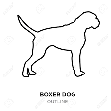 A Boxer Dog Outline On White Background ...
