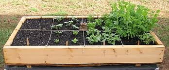 Small Picture Exellent Box Garden Ideas Love Having Two Of These Intended Design