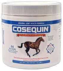 Original Cosequin Horse Joint Supplement Jeffers Pet