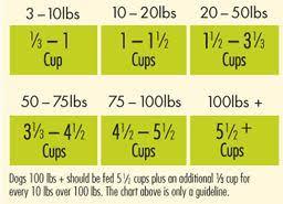 Pomeranian Puppy Feeding Chart Avoderm Natural Dry Wet Dog Food Healthy Skin And Coat Lamb Brown Rice Recipe