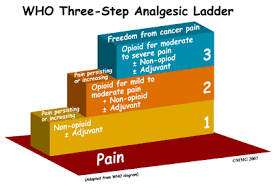 3 different types of non pharmacological pain relief used in labour