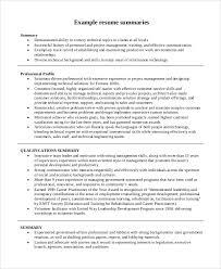 Summary Sample Resume 8 Resume Summary Examples Pdf Word
