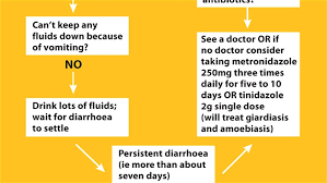 The Diarrhoea Treatment Chart Everything You Ever Wanted To Know About Travellers