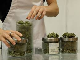 Image result for marijuana Dispensary