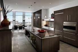 custom kitchen cabinets dallas. Floor Endearing Contemporary Kitchen Cabinets 15 Expressions E 1 Dallas Tx Custom M