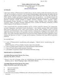 It Auditor Sample Resume Mwb Online Co