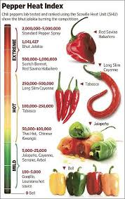 Chilli Hotness Chart How Hot Are Your Chillies Stuffed Peppers Stuffed Hot