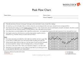 Peak Flow Chart The Asthma Foundation