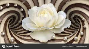 Wallpaper White Rose Pearls Optical ...