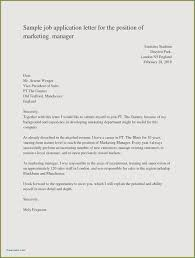Outstanding College Application Essay Examples About Yourself