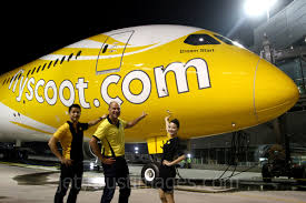 Image result for scoot 787-8