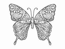 Kleurplaat Vlinder Elegant Populair Kleurplaten Voor Volwassenen