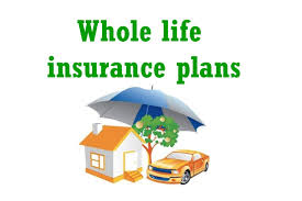 Quote Whole Life Insurance 100 Life Insurance Whole Life Quotes Photos and Images QuotesBae 50