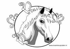 Meer Kleurplaten Paarden Paard Ingelijst Kleurplaten Libros