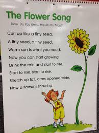 the flower action s autumn art baby animals curriculum planting