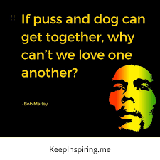 Rasta Love Quotes For Haters