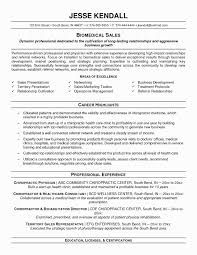 Functional Resume Template Beautiful Functional Resume Template Free