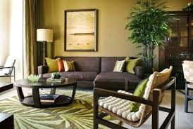 incredible green and brown living room beautiful astonishing brown and lime green living room for your