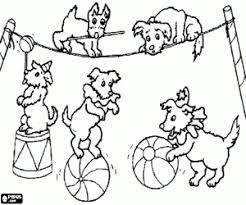 Disegni Di Circo Da Colorare E Stampare