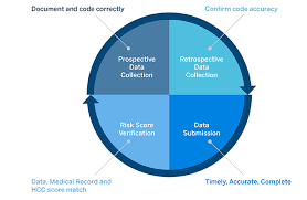 Aca Risk Adjustment Management Cracking The Code Milliman