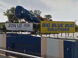 Big Blue Bug Solutions Dem Raimondo Republican Fung Sail To Victory In Rhode Island