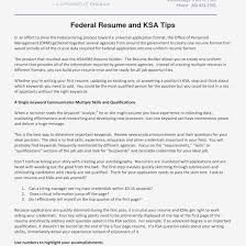 Resume Dos And Donts Sample Job Resume Format