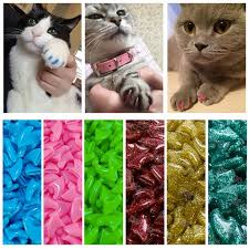 adhesive glue size xs s m lgift for pet
