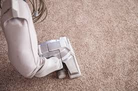 Image result for finding the best carpet cleaning company