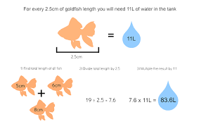 Fantail Goldfish Growth Chart How To Care For Goldfish My Pet Warehouse