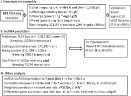Genome Wide Identification And Differentially Expression