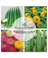 summer flower seed kit pack of 10 and hybrid vegetable seed kit pack