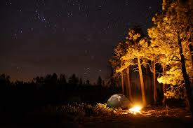camping in the woods at night. Mogollon Camping (NicLeister) Tags: Arizona Southwest Nature Night Forest Stars Landscape Fire In The Woods At E