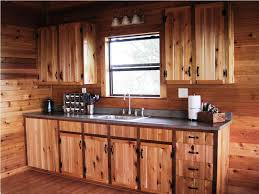 cabin kitchen design. Beautiful Design Full Size Of Kitchen Ideas Small Cabins For Sale Tiny House Cabinet Design  Cabin Kitchens  With O