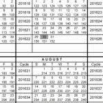 2019 Refund Cycle Chart Fresh 43 Examples 2019 Federal Tax Calendar Blank