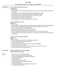 Auditor Job Description Resumes Audit Support Resume Samples Velvet Jobs