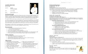 Executive Chef Resume New Executive Chef Resumes Samples Examples Resume Sample Personal