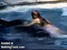killer whale attacks on humans. Killer Whale Attacks Unsuspecting Girl On Humans