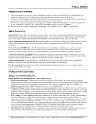 Resume Professional Summary Example Cus Resume Summary Examples For