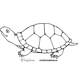 Small Picture Coloring Pages Of A Turtle Interesting Free Printable Sea Turtle