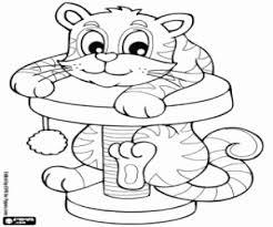 Kleurplaten Kitten Jonge Kat Kleurplaat